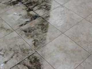 Tile Cleaning | Laguna Niguel Carpet Cleaning